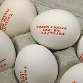 鸡蛋打码效果